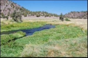 Northern California Spring Water Sources Key to Weathering Drought and Climate Change